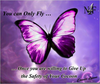 Confederate Butterfly Clipart Image