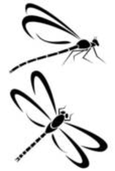 Small Dragonfly Drawing Png Small · Medium · Large