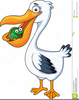 Clipart Of Pelicans Image