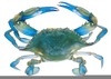 Blue Claw Crab Clipart Image