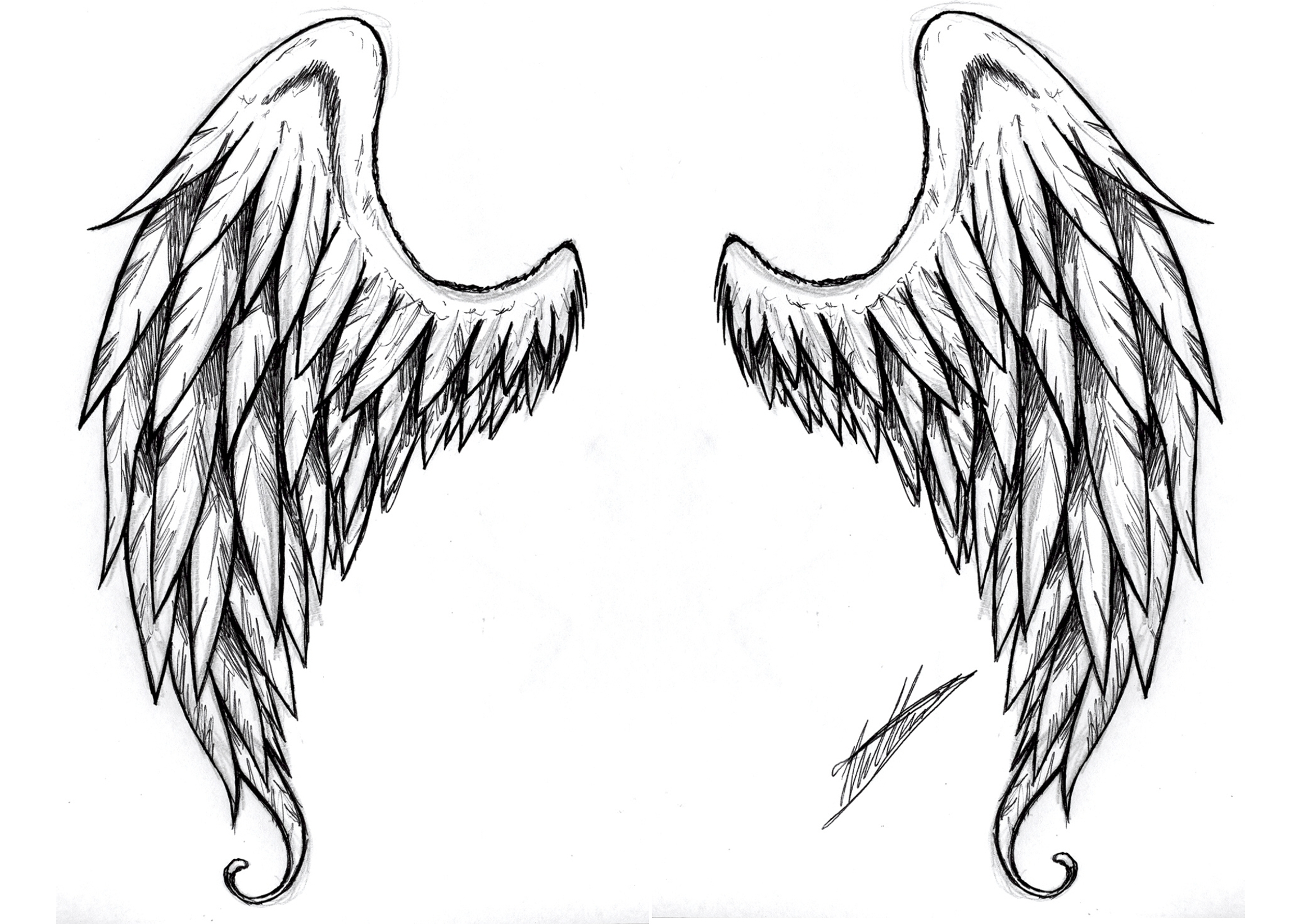 tribal chest tattoos wings Spirogs Wings By clip  Free Images  Clker.com   Tatoo Angel at vector