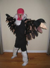 Vulture Wings Costume Image