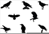 Halloween Crow Clipart Image