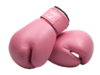 Pink Boxing Gloves Image