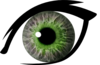 Eye L Green Image