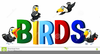 Bird Clipart Png Image