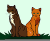 Tigerstar Warrior Cats Image