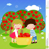 Clipart Apple Picking Image
