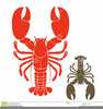 Lobster Clipart Picture Image