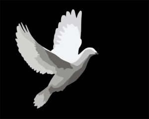 Dove Flying Clip Art