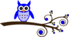 Blue Owl On Branch Clip Art