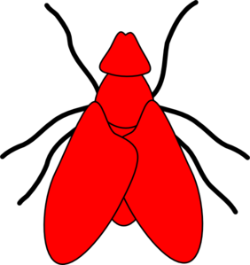 Fly Line Drawing - Red Clip Art
