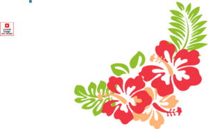 Hibiscus Beauty Clip Art
