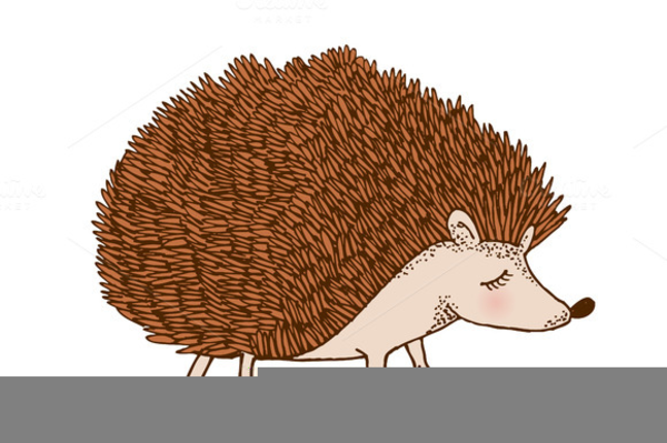 porcupine clipart free free images at clker com vector clip art rh clker com tree porcupine clipart porcupine clipart black and white