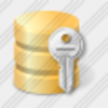 Icon Database Key Image