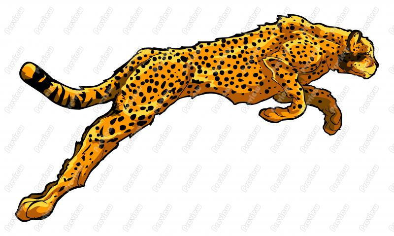 Realistic Cheetah Cartoon Clip Art | Free Images at Clker ...