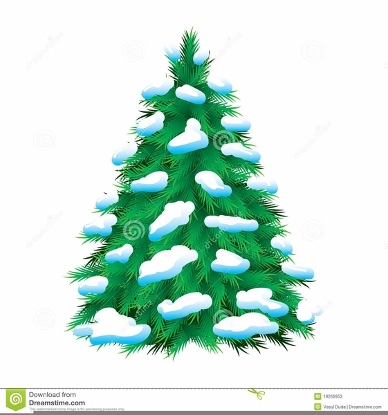 Pine Tree Clipart Free Free Images At Clker Com Vector Clip Art