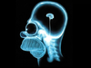 Homer Simpson Wallpaper Brain Image