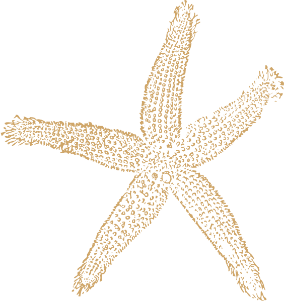 beach starfish for wedding clip art at clker com vector clip art rh clker com Beach Wedding Border Beach Wedding Border
