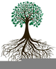 Clipart Tree Branches Roots Image
