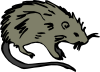 Mouse Rat Rodent Clip Art