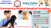 Emergency Animal Hospital Vaughan Napa Valley Vet Hospital Image