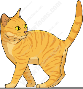 Royalty free cat. Clipart tabby images at