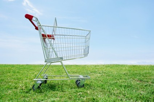 Eco Shopping Cart On Lawn Image