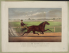 Mr. Bonner S Horse Joe Elliott, Driven By J. Bowen: Trotting In Harness At Mystic Park, Medford, Mass. June 28th 1872 Image