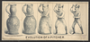 Evolution Of A Pitcher Image