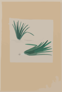 Scallions With Plant Growing In The Background Clip Art