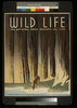Wild Life The National Parks Preserve All Life. Image