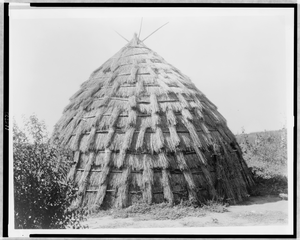 Wichita Grass-house Image