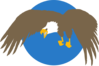 Eagle With Blue Circle Background Clip Art