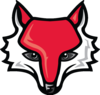 Red Foxs Image