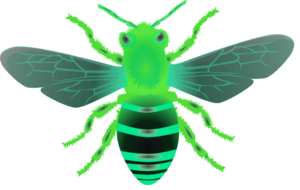 Bee B Green Image