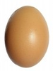 Egg On White Background Thumb Image