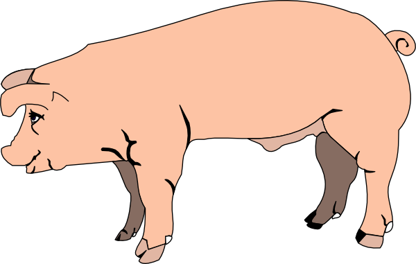 Pig standing. Clip art at clker
