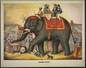 Performing Elephant Image