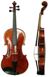 Chinese Viola Views Image