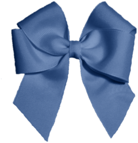 [Image: 1329152848555261256baby%20blue%20bow-hi.png]