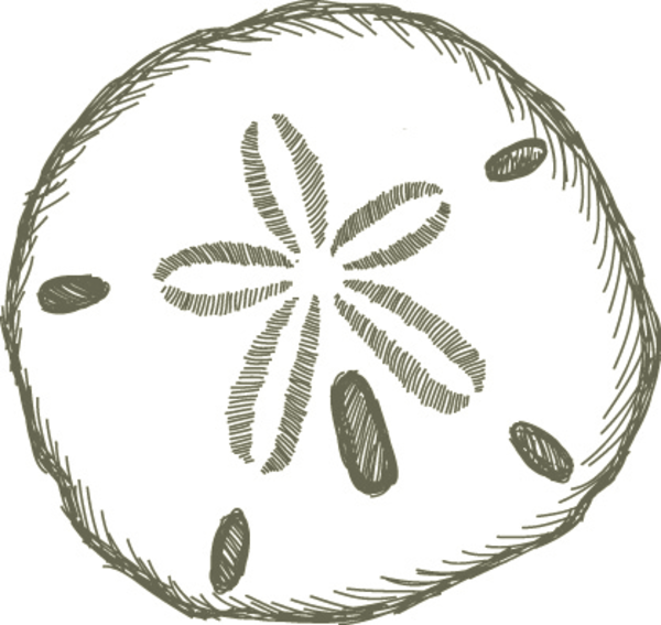 Sand Dollar | Free Images at Clker.com - vector clip art ...