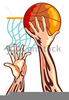 Free Basketball Player Clipart Image