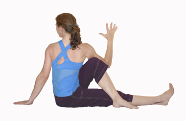 Seated Twist | Free Images at Clker.com - vector clip art online ...