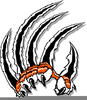 Claw Clipart Image
