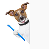 Dog With Toothbrush Clipart Image