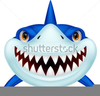 Pictures Cartoon Shark Clipart Image