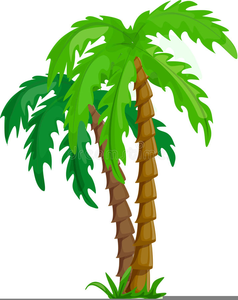 Clipart Images Of Coconut Trees Image
