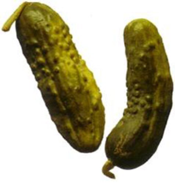 Pickles   Free Images ...
