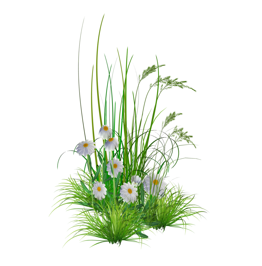 Garden Flowers Png | Free Images at Clker.com - vector ...